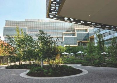 Cambridge – Novartis Institutes